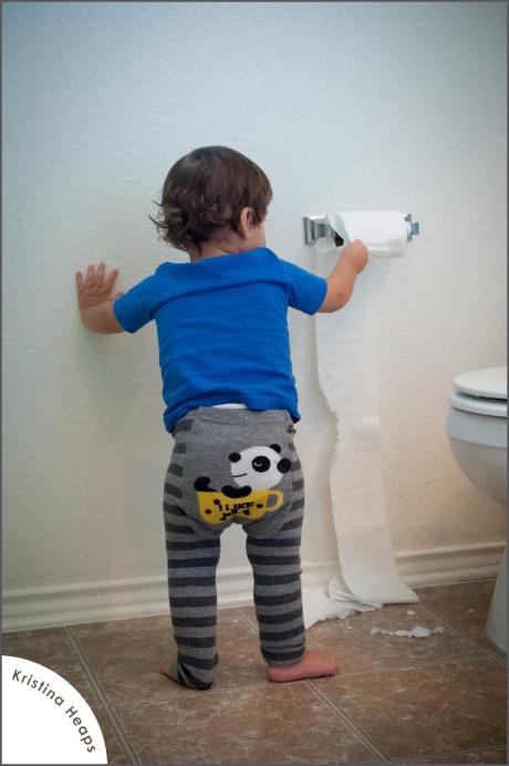 2012-october-toilet-paper-14