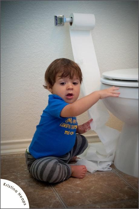 2012-october-toilet-paper-15